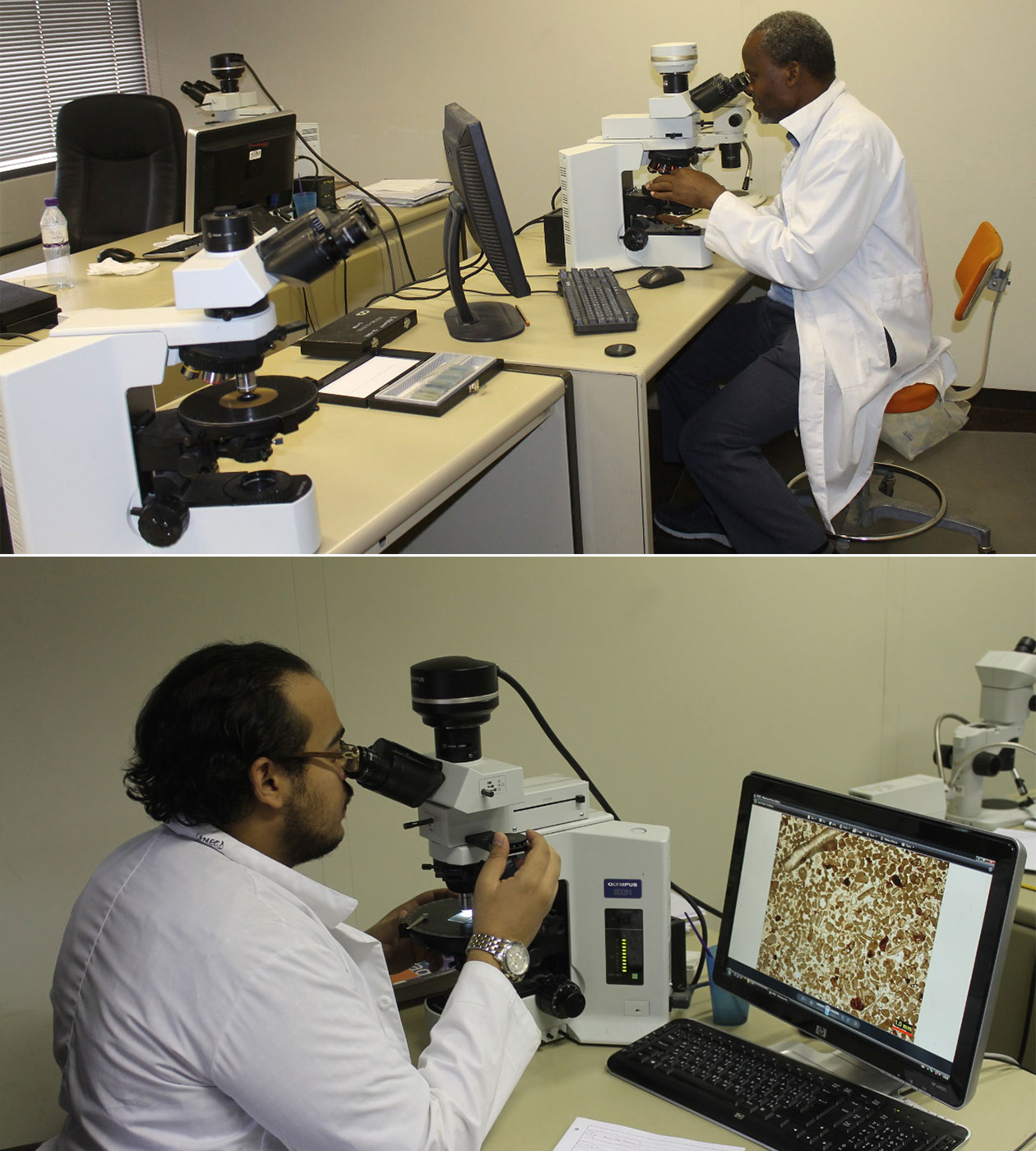 petrography-lab
